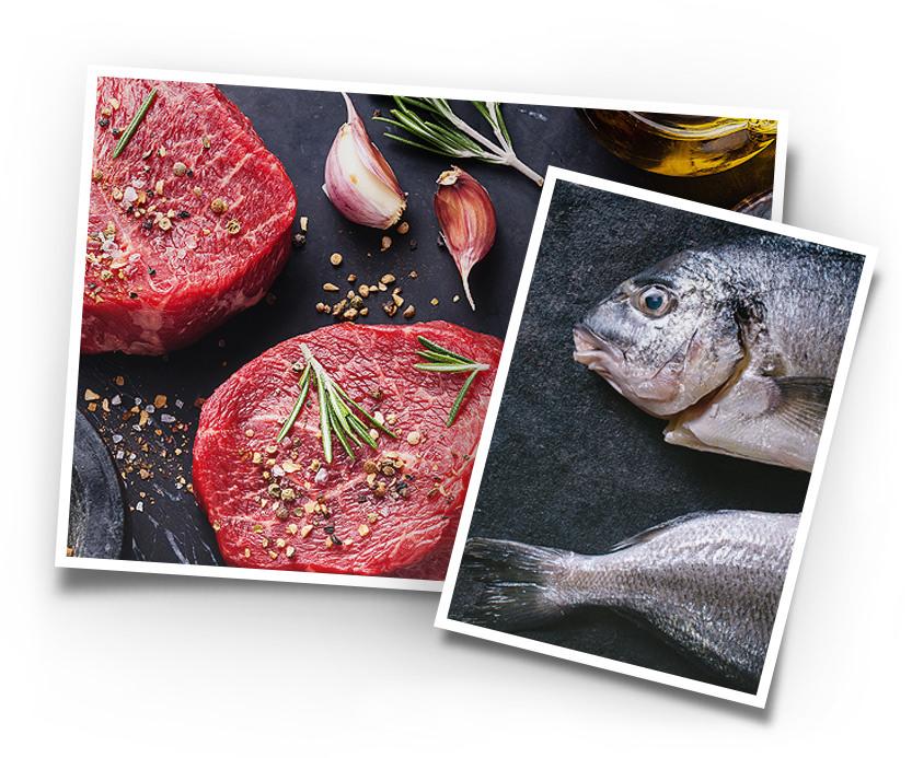 Über die Qualität von Fisch und Fleisch